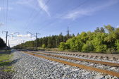 Railway on background of the forest landscape. — Stock Photo