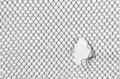 The hole in the steel mesh. — Stock Photo