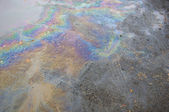 Oil slick on the road. — Stock Photo