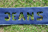 Jeans na grama. — Foto Stock