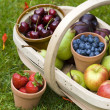 Trug of summer fruit — Stock fotografie