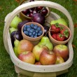 Trug of summer fruit — Stock Photo #12418370
