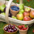Trug of summer fruit — Stock Photo