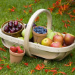 Trug of summer fruit — Stock Photo #12420287