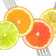 Lime lemon orange and grapefruit citrus fruit — ストック写真