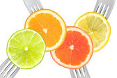 Lime lemon orange and grapefruit citrus fruit — Stock Photo