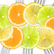 Citrus fruit sliced on forks — Stock Photo