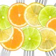 Citrus fruit sliced on forks — Stock Photo #18684693