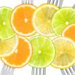 Citrus fruit sliced on forks — Stock Photo