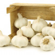 Bunch of dried whole garlic bulbs in a wooden crate - Stock Photo