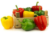 Red,yellow and green bell peppers (capsicum) — Stock Photo