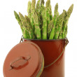 Stock Photo: Fresh green asparagus shoots in a brown enamel cooking pot
