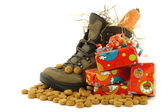 "Shoe with a winter carrot and some straw set for ""Sinterklaas"" and some presents — Foto de Stock"