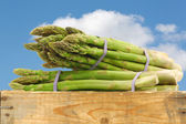Fresh green asparagus shoots in a wooden crate — Stock Photo