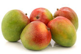 Fresh mango fruits — Stock Photo
