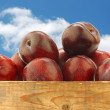 Fresh red plums in a wooden crate - Stock Photo