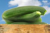Fresh zucchini's (Cucurbita pepo) in a wooden box — Stock Photo