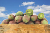 Fresh kiwi berries and a cut one in a wooden crate — Stock Photo