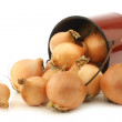 Brown onions in an vintage enamel cooking pot — Stok fotoğraf