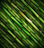 Background with bamboo — Stock Vector