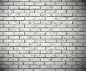 White brick wall — Stock Vector