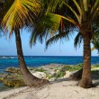 Riviera Maya — Stock Photo
