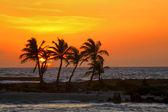 Sunrise in Riviera Maya — Stock Photo