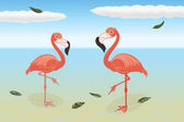 Stoic flamingos — Stock Vector