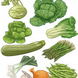 Vegetables III — Stock Vector