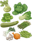 Vegetables III — Stock Vector