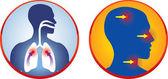 Respiratory icons — Stock Vector