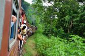 Train travel from Colombo to Kandy, Srí Lanka — Stock Photo