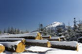 Winter in tatras mountains in poland with heap of pieces of wood — Stock Photo