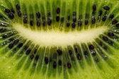 Fruit of fresh kiwi — Stock Photo