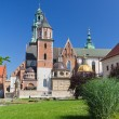 Wawel Cathedral on wawel hill in old town in cracow in poland — Stock Photo