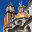 Wawel cathedral on wawel hill in old town of cracow in poland — Stock Photo