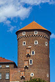 View on wawel royal castle with sandomierska tower in cracow in poland — Stock fotografie
