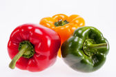 Colorful peppers isolated on white background — Stock Photo
