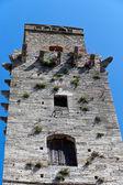 イタリアの両日のサン ・ ジミニャーノの有名な塔のいくつかの表示します。 — ストック写真