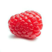 One single Raspberry against a white background - square — Stock Photo