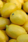 Full raw and ripe lemons on display close up — Stock Photo
