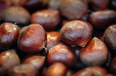 Fondo de castañas crudas cerrar macro — Foto de Stock