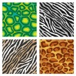 Animal Print Background - Stock Vector