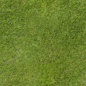 Green Lawn Wallpaper — Stock Photo