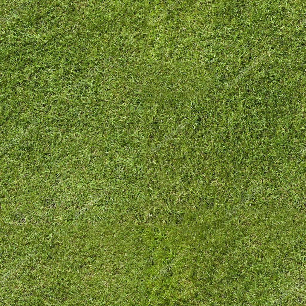 трава текстура  № 1309963 без смс