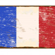 French Flag Enamel Sign — Stockvektor