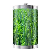 Wheat Field Battery — Foto de Stock