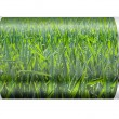 Wheat Field Battery — Stock Photo