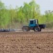 field cultivation — Stock Photo