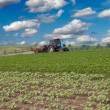 Stock Photo: Spraying field